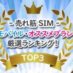 【売れ筋SIM】UQモバイル・オススメプランの厳選ランキングベスト3