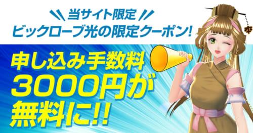 【当サイト限定】ビッグローブ光のクーポンコードを入力!申し込み手数料3,000円が無料になります
